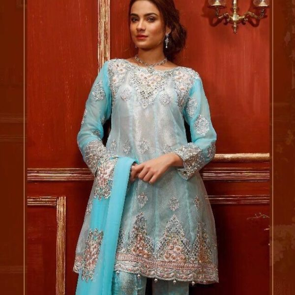 DEEPSY PAKISTANI SALWAR SUITS (2)